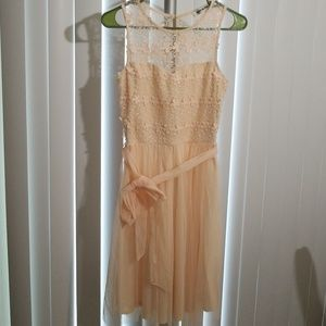 Light peach colored lace and tulle dress